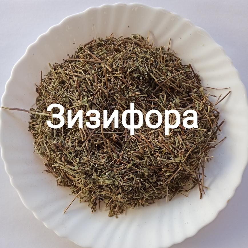 Зизифора